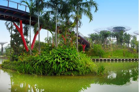 10 мест, которые нужно посетить в Сингапуре | галерея [1] фото [5]