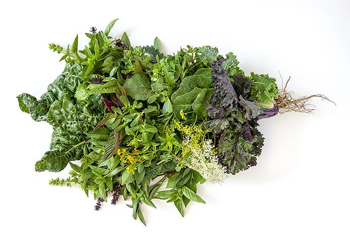 Свежие травы и листовые салаты