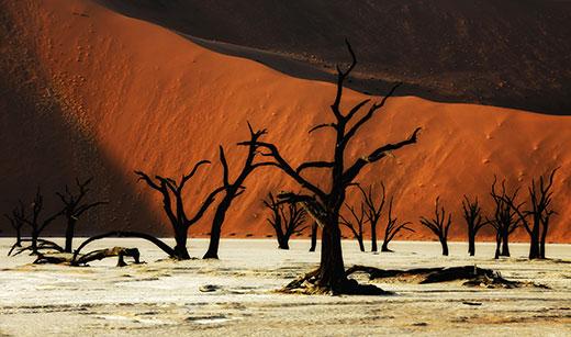 «Мертвая долина» Дедвлей затеряна среди красных дюн Соссусвлей