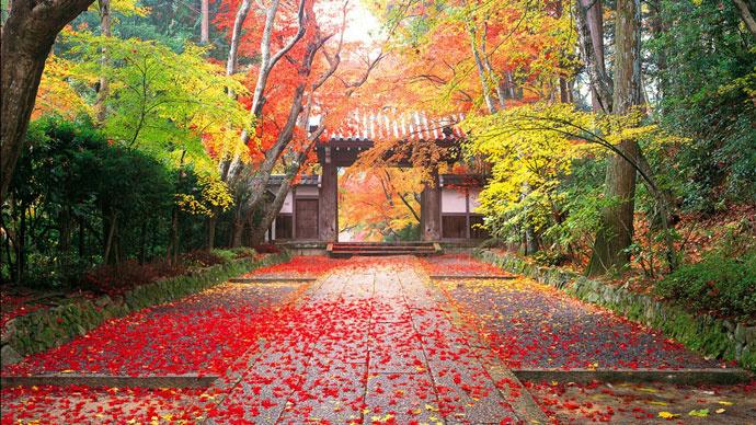 Уэно Парк, Токио, Япония