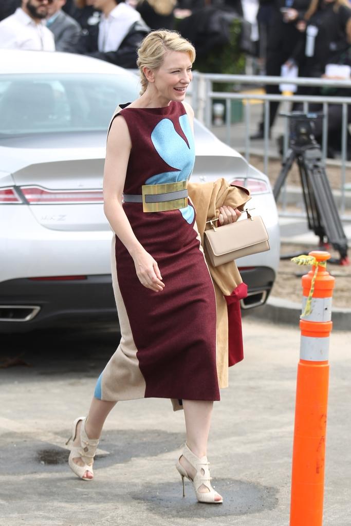 Кейт Бланшетт с сумкой M2Malletier