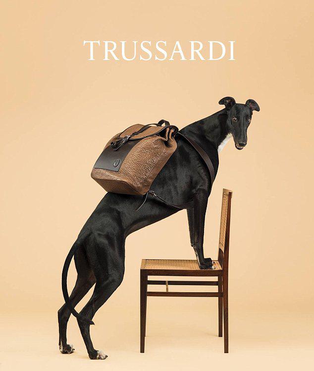 Бренд Trussardi представил новую рекламную кампанию