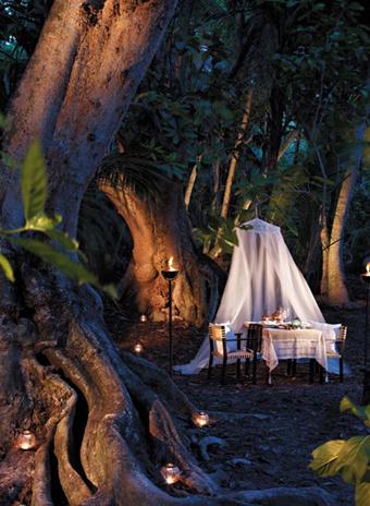 Отужинать можно прямо в джунглях