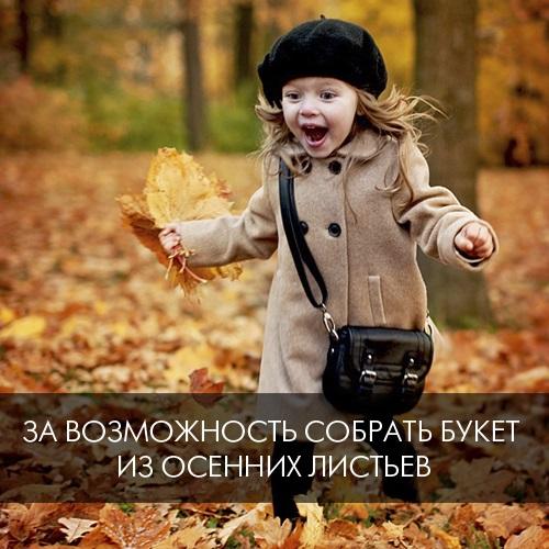 6. За возможность собрать букет из осенних листьев