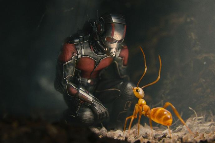 «Человек-муравей» (Ant-Man) 5