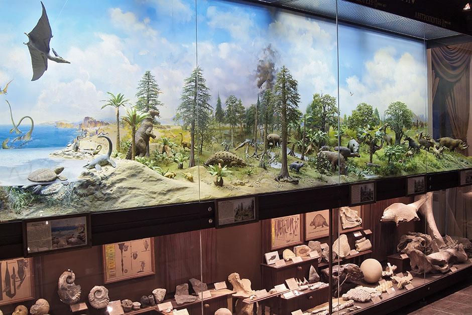 Биологический музей