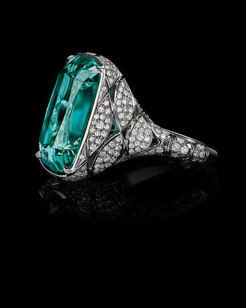 Tiffany & Co. представил новую коллекцию Высокого ювелирного искусства Blue Book | галерея [1] фото [7]