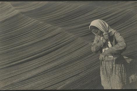 Завтра на ВДНХ откроется выставка «Энциклопедия фотографии (1891–1991)» | галерея [1] фото [6]