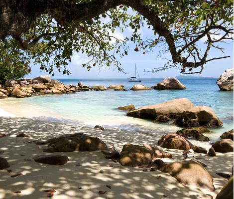 Ромовый дневник: лучшее на Сейшелах | галерея [1] фото [1]