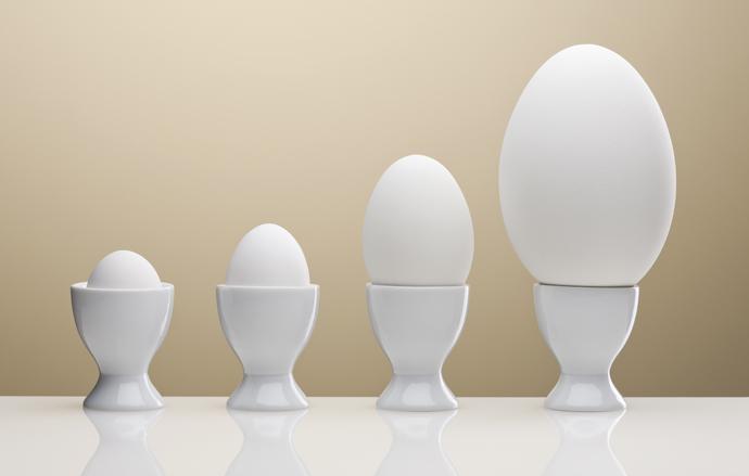 органические яйца для красивых волос