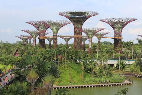10 мест, которые нужно посетить в Сингапуре | галерея [1] фото [2]