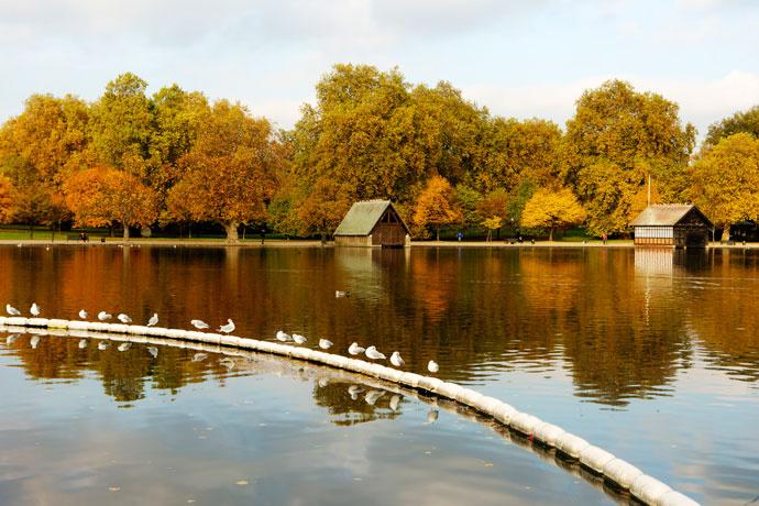 Гайд-парк, Лондон, Англия