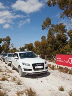 В Подмосковье состоится гольф-турнир Audi quattro Cup