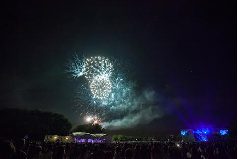 Пикник «Афиши» 2015: итоги фестиваля | галерея [1] фото [10]