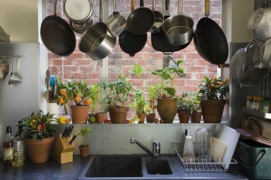 5 базовых правил фэн-шуй: как привлечь в дом богатство