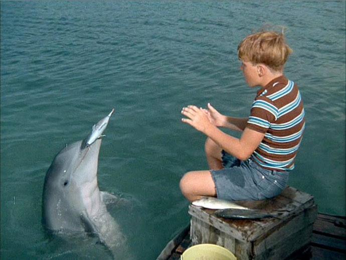 Дельфин Сьюзи