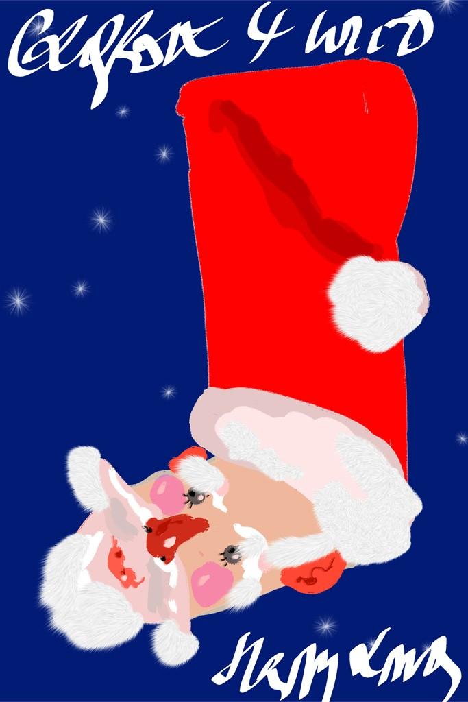 Рождественский чулок от Christian Lacroix