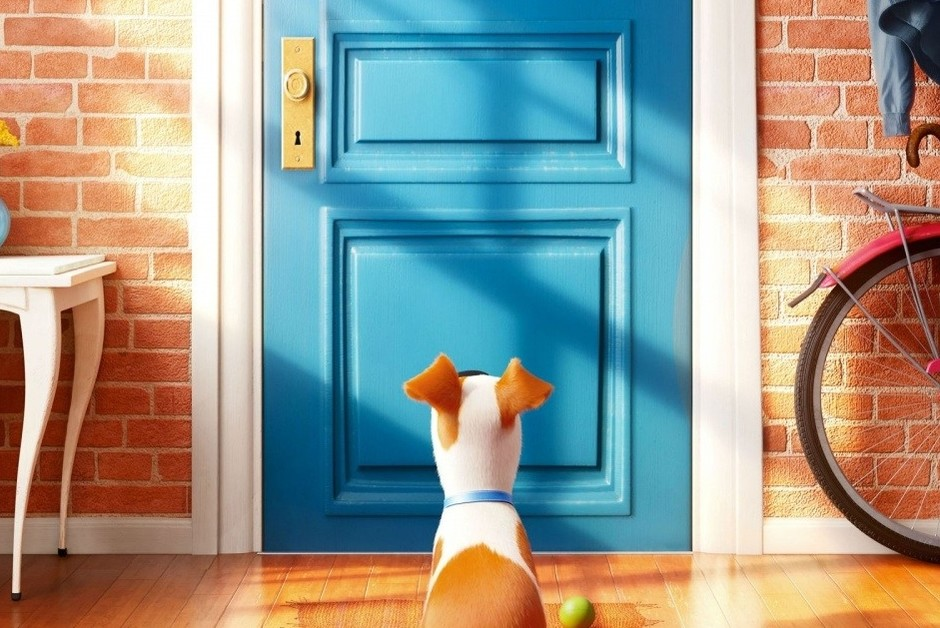 «Тайная жизнь домашних животных», (The Secret Life of Pets)
