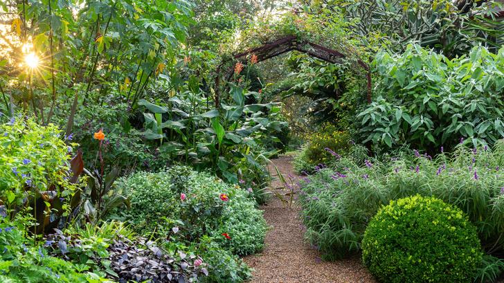 Дом и сад Бронте в центре Сиднея (фото 12)