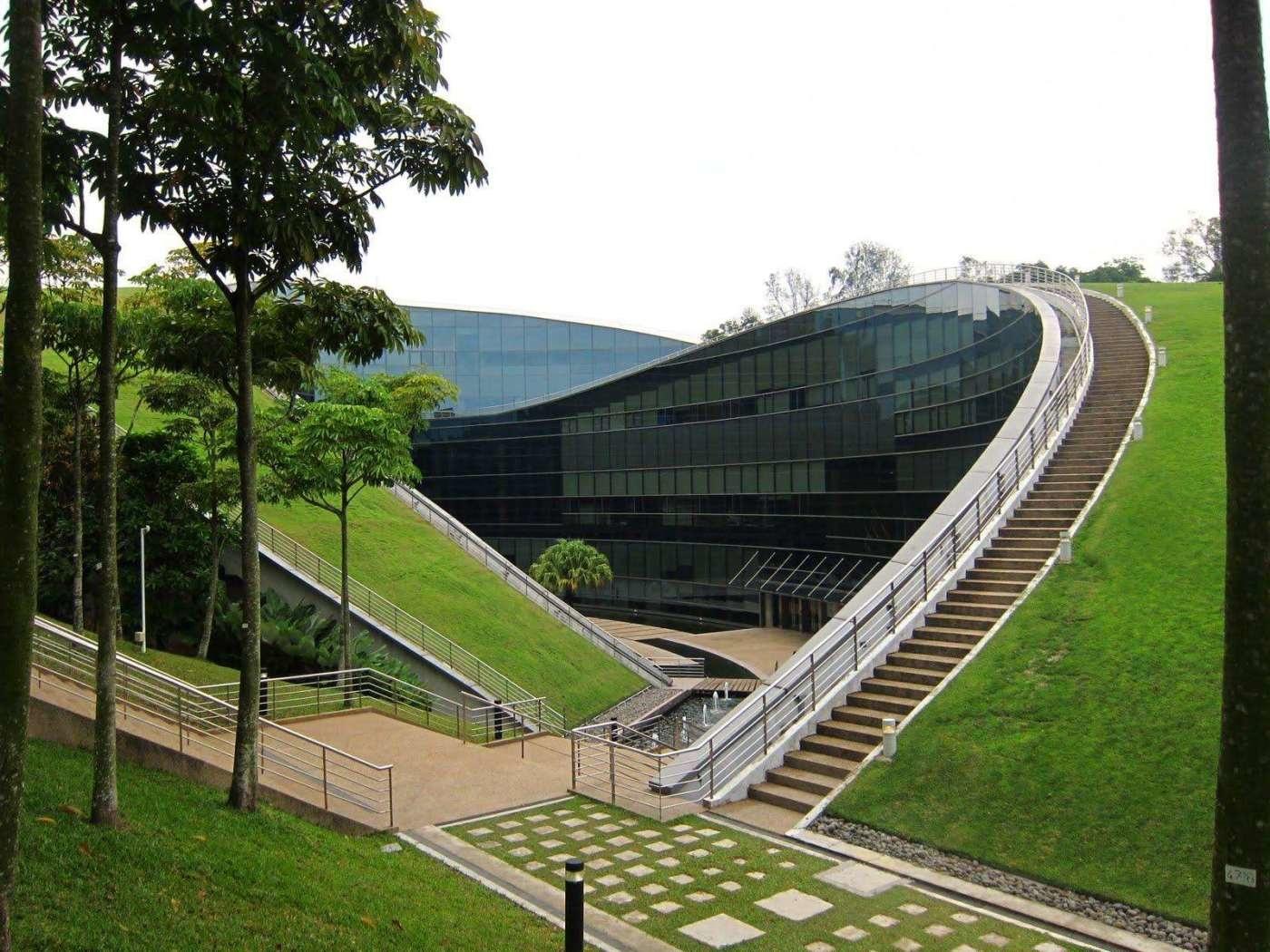 Пятый фасад: зеленые крыши (галерея 15, фото 0)
