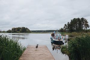 Новый романтизм: палаточный отель «Лес и море» в Калязине и на Алтае (фото 2.2)