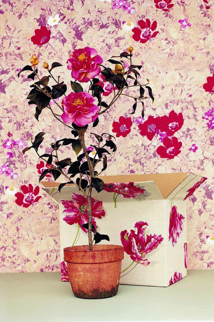 Обои, Kolov Van Der Bossche обои с цветочным рисунком ткани с цветочным рисунком