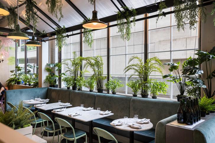 Веганский ресторан Rosalinda в Торонто (фото 3)