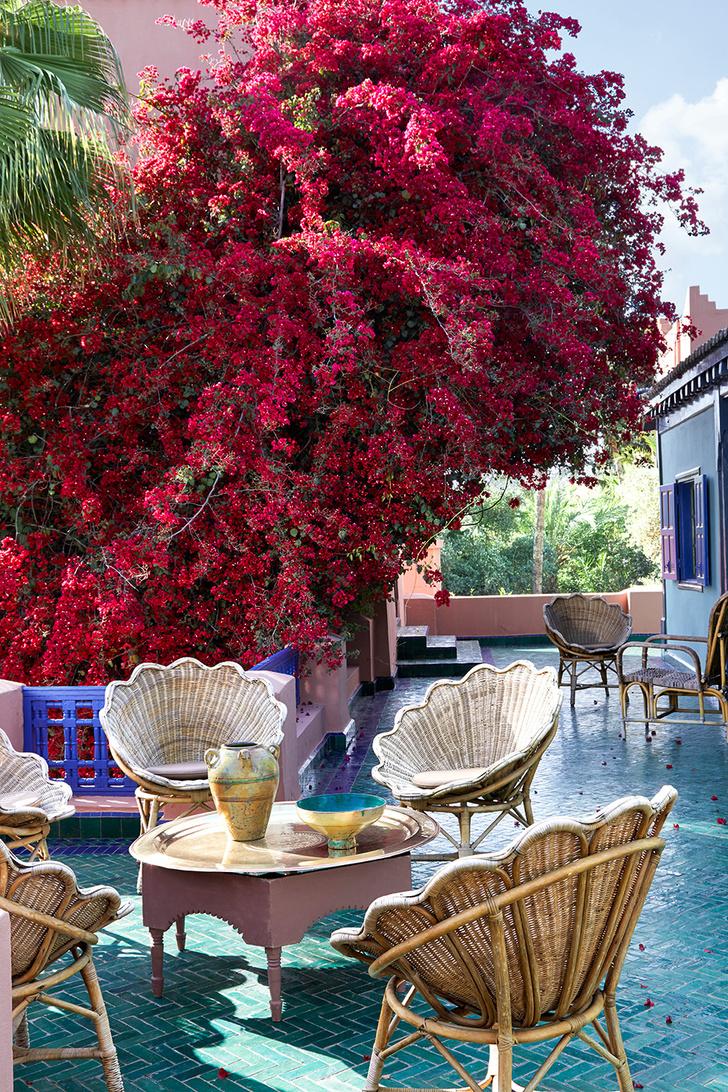 Оазис в пустыне: на вилле Ива Сен-Лорана в саду Мажорель (фото 11)