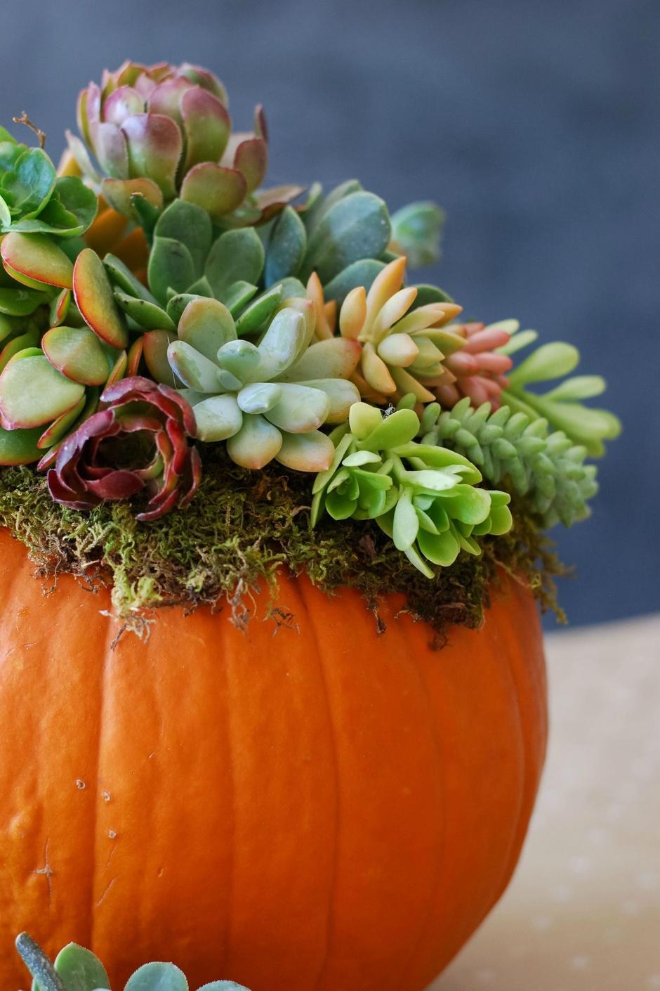 Декор тыквы своими руками: 10 простых и красивых идей (фото 1)