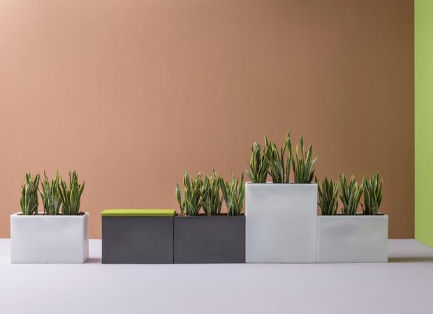 Кашпо и мебель для домашних растений (фото 19)