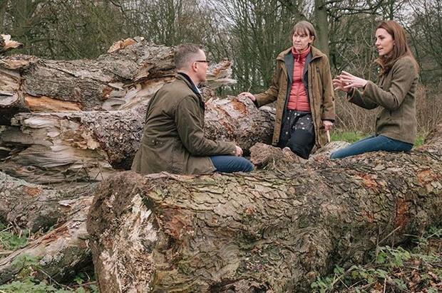 Назад к природе: Кейт Миддлтон разбила сад в Челси — и он завораживает (фото 3)