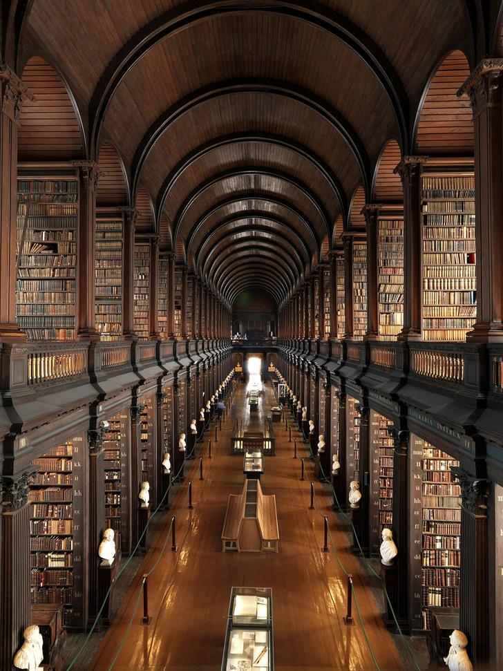 Самые потрясающие библиотеки мира (фото 48)