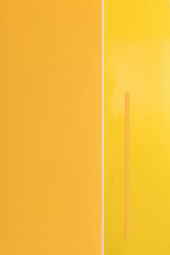 Желтые стены и розовый мех: шоу-рум в Ростове-на-Дону (фото 4.1)