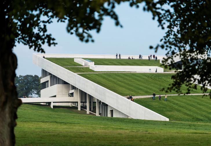 Пятый фасад: зеленые крыши (фото 17)