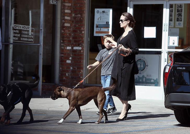 Новый выход Анджелины Джоли с сыном Ноксом фото [1]