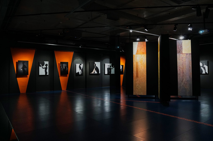 Выставка «Майер VS Брюханов» в арт-галерее VS Unio (фото 2)