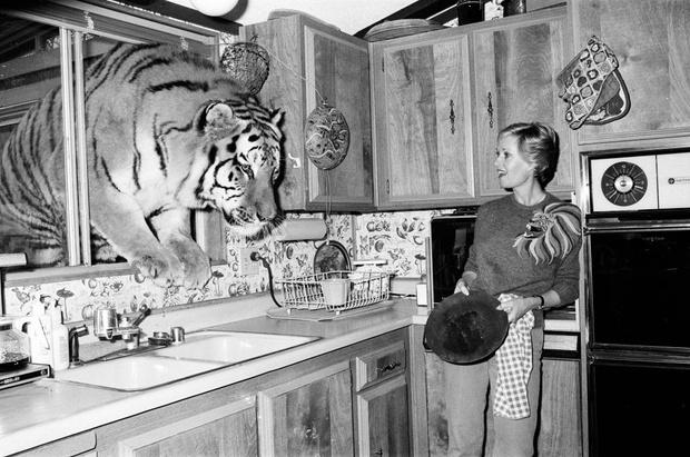 «Я выросла в окружении 60 кошек и 14 тигров и львов, которые живут в доме у моей бабушки»: неожиданное признание Дакоты Джонсон (фото 3)