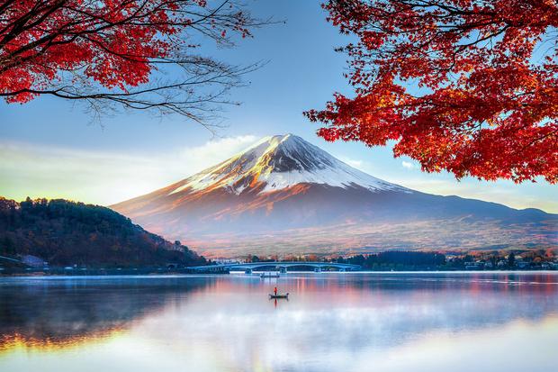 Азия из первых рук: интересные факты о Японии, которые стоит знать (фото 15)
