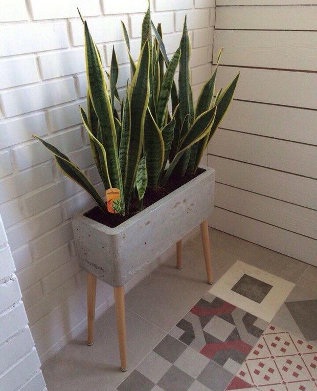 Кашпо и мебель для домашних растений (фото 9)
