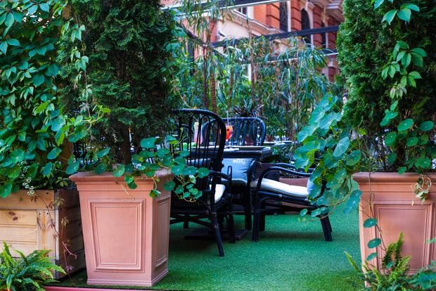 В ресторане «The Сад» отмечают начало лета новым меню (фото 0)