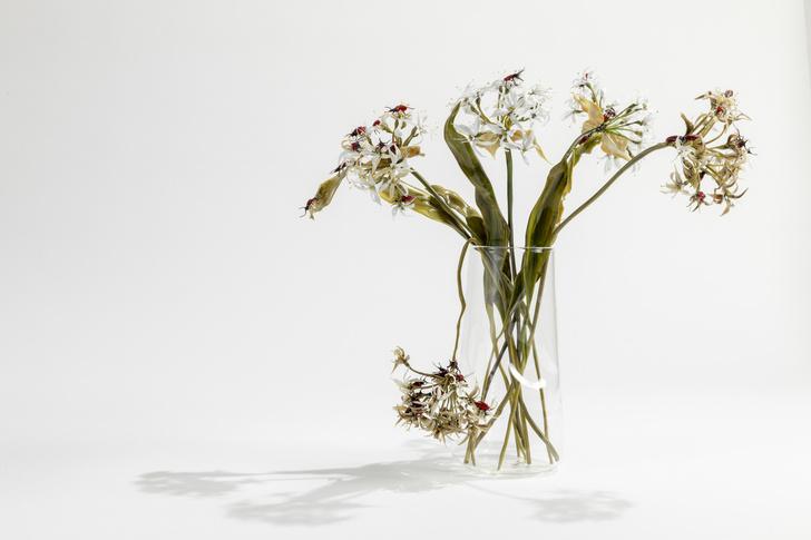 Цветы из стекла Лиллы Табассо (фото 13)