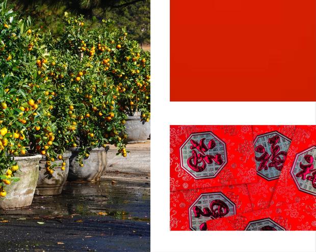 Эксперт по этикету Сара Джейн Хо: как правильно отмечать Китайский Новый год? (фото 5)