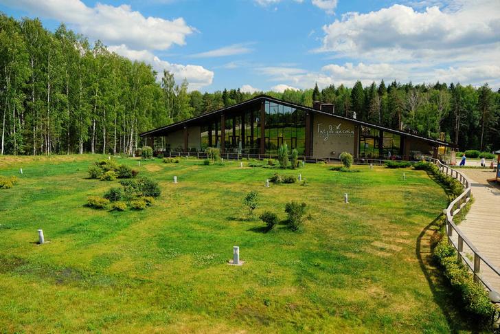 Всероссийский архитектурный конкурс «Дом для Доброграда» (фото 4)