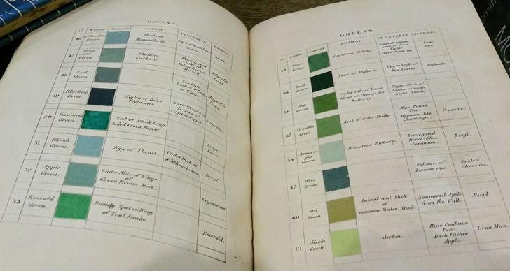 Классификатор цветов XIX века (фото 2)