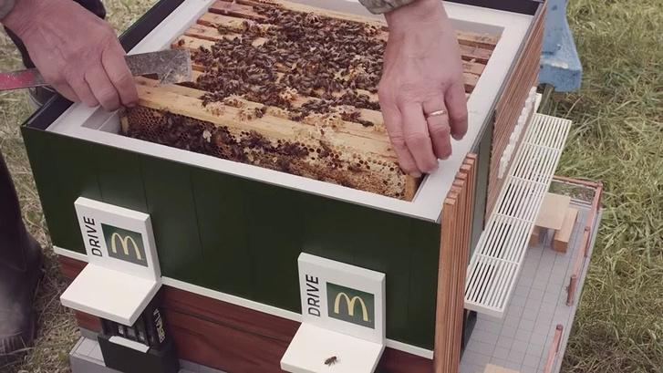 McHive: первый в мире Макдоналдс для пчел (фото 4)