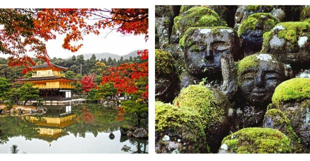 Азия глазами местных жителей: интересные факты о Японии, которые стоит знать (фото 14)