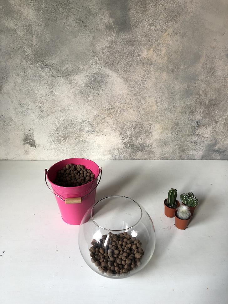 Как сделать зимний флорариум своими руками (фото 5)