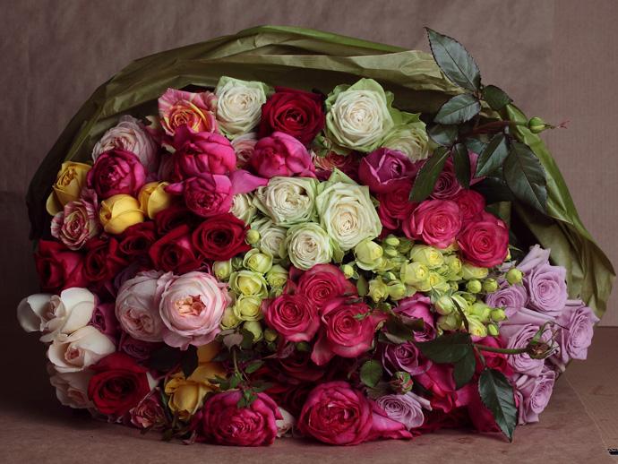 Флоранс Жерве, Фея розы, розы, цветы