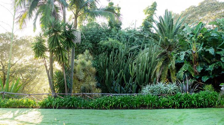 Дом и сад Бронте в центре Сиднея (фото 8)