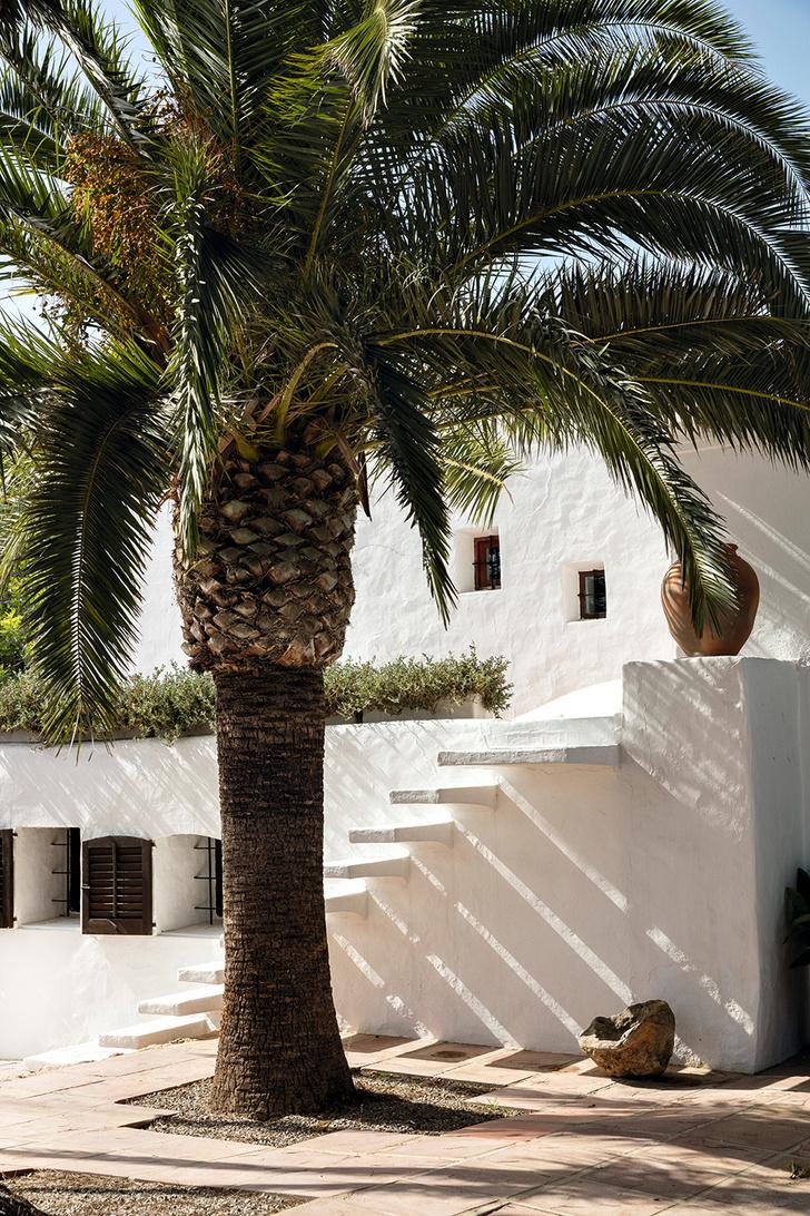 Остров сокровищ: дом Патриции Уркиолы на Ибице (фото 1)